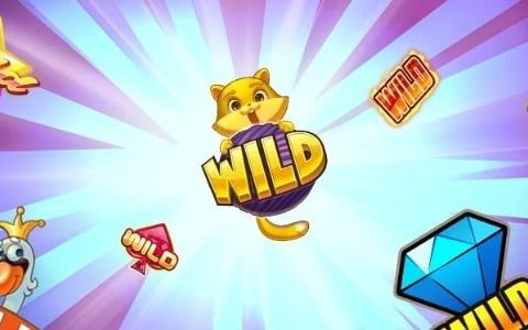 Know Your Wilds – Your Guide to Wild Symbols in Bitcoin Slots